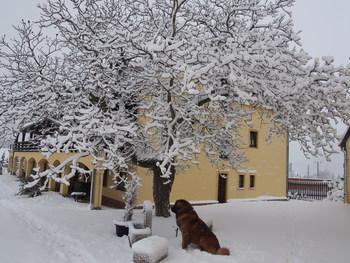 Penzion usedlost Veselka