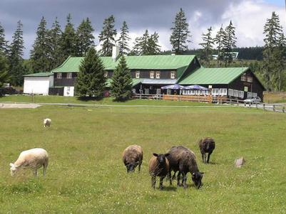 Horský hotel Lesní Bouda