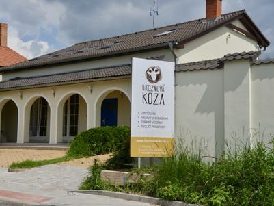 Vila Hroznová koza