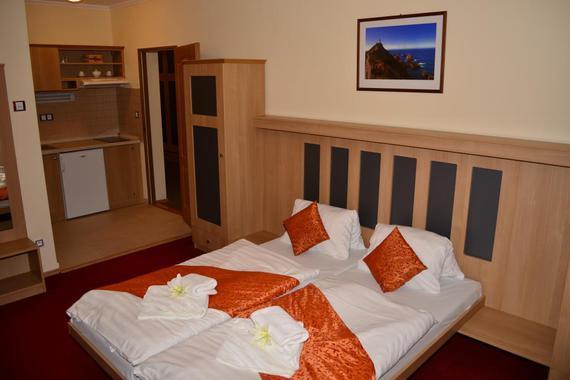Pokoj č.6 s kuchyňským koutem,soc.zařízením a balkonem.