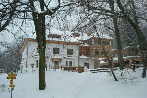 Lesní penzion Bunč foto 2