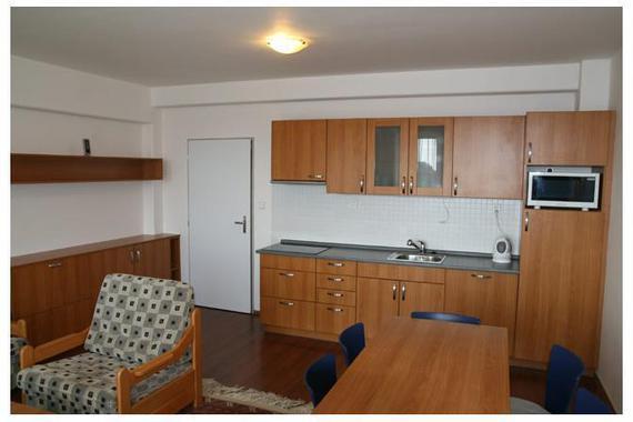 Apartmány Sving Horní Mísečky foto 6