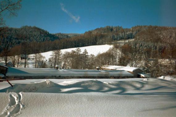 Vila Křenov foto 6