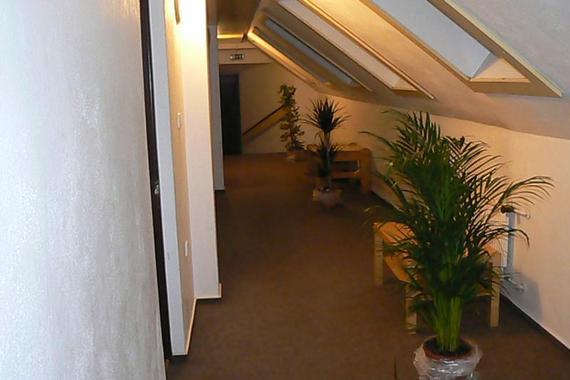 Hotel U Kociána foto 4