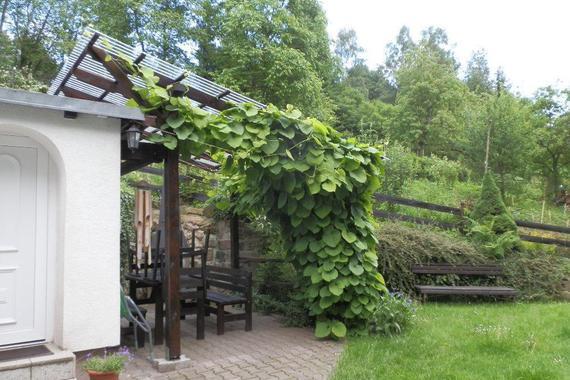 Rekreační chata Líska foto 4