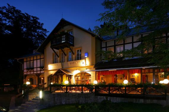 Hotel Erika foto 1