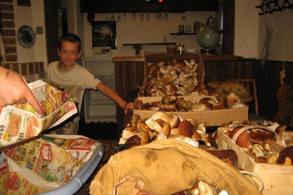 BRDY ráj houbařů