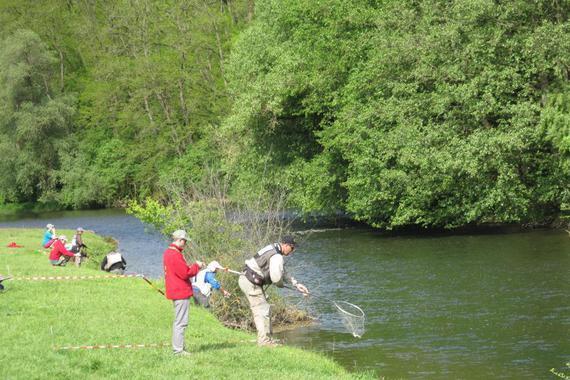 Toto foto pochází z nedávného mistrovství světa v lovu lososovitých ryb v řece Jihlavě