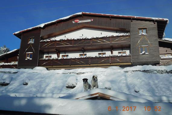 Pension H - Ubytování Krušné hory foto 21