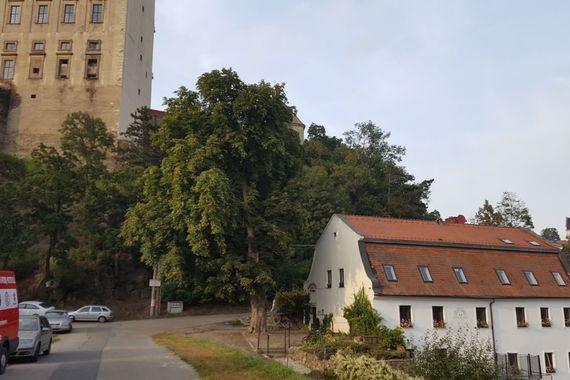 Penzion Ve mlýně foto 4