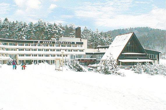 Activitypark Hotel Všemina foto 2