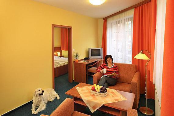 Hotel Záviš z Falkenštejna foto 17