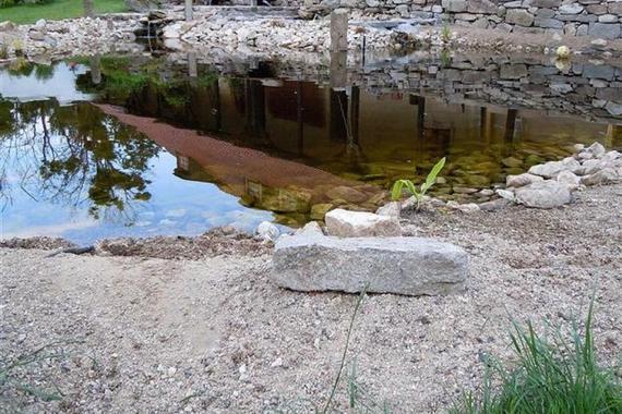 Ubytování Penzion / Kemp  Jedraž foto 8