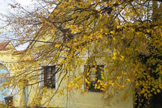 Penzion Žuhansta foto 4