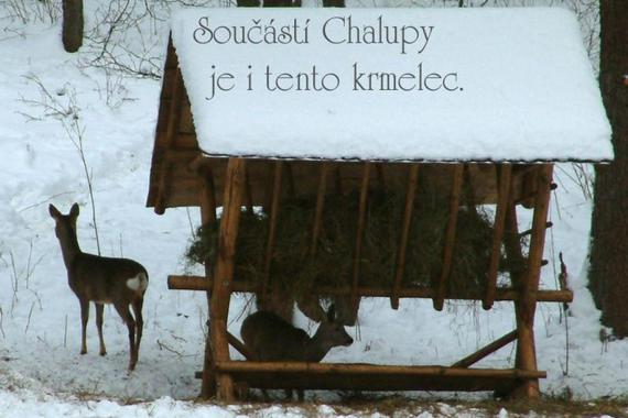 Chalupa Pod Sviní horou foto 6