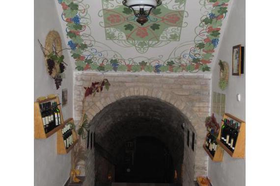 Vinný sklep Herbenka foto 16