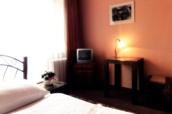 Hotel Bor foto 6
