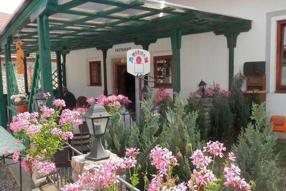 Restaurace a penzion U Lva foto 6