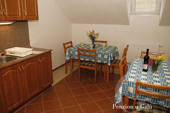 Penzion U Galů foto 10