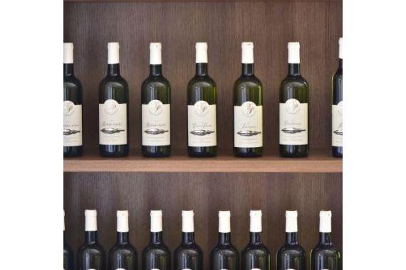 Penzion Klentnice - vinařství Peřina foto 14
