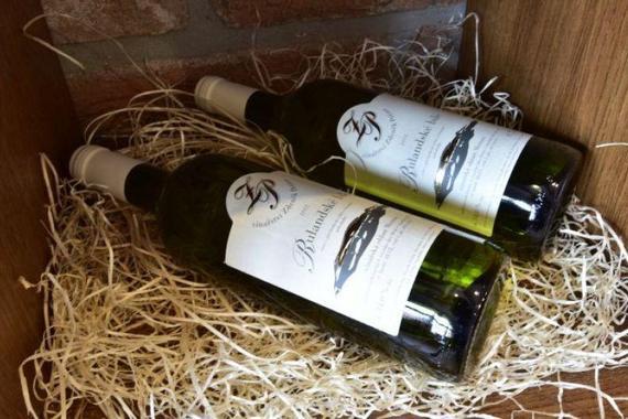 Penzion Klentnice - vinařství Peřina foto 12