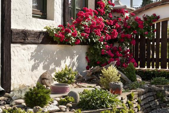 Zákoutí v zahradě