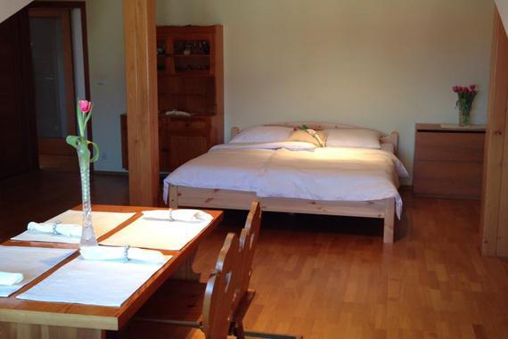 U Šilhanů (ubytování a penzion) foto 18