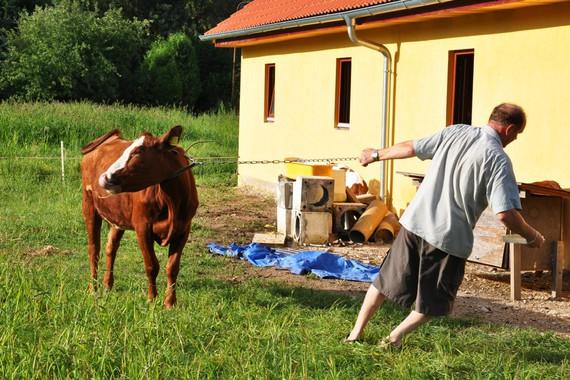 Farma Ztracenka foto 12