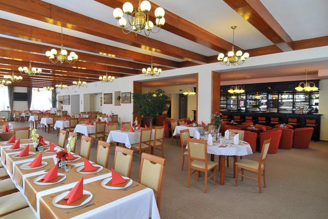 Hotel Mánes s.r.o. foto 6