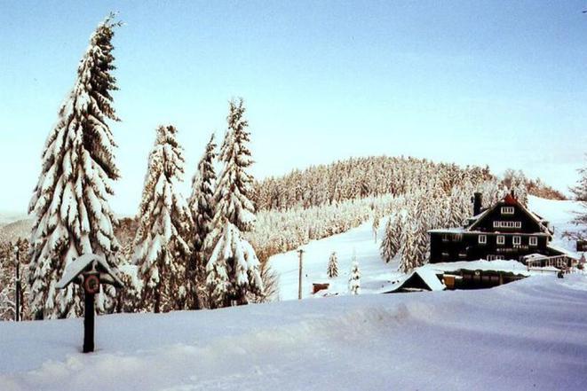 příjezdová cesta v zimě