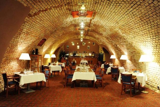 HOTEL DVOŘÁK **** Tábor, s.r.o. foto 4