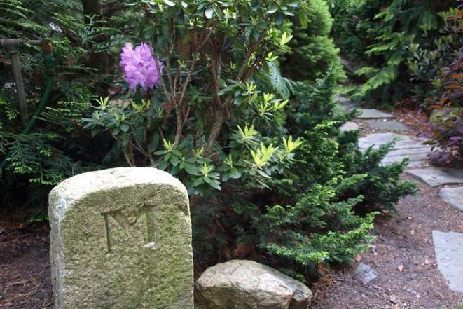 a-flora PENZION foto 13