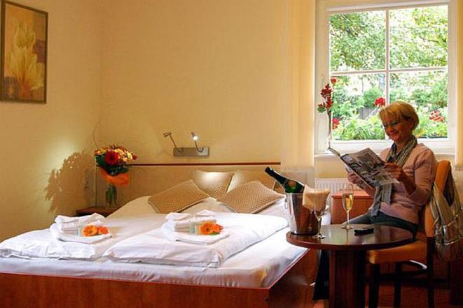 Hotel Francis Františkovy Lázně foto 11