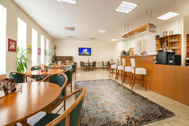Hotel Dvořák České Budějovice s.r.o. foto 7