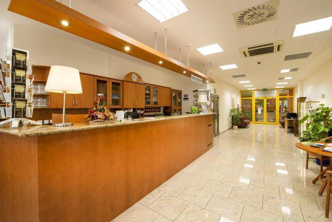 Hotel Dvořák České Budějovice s.r.o. foto 10